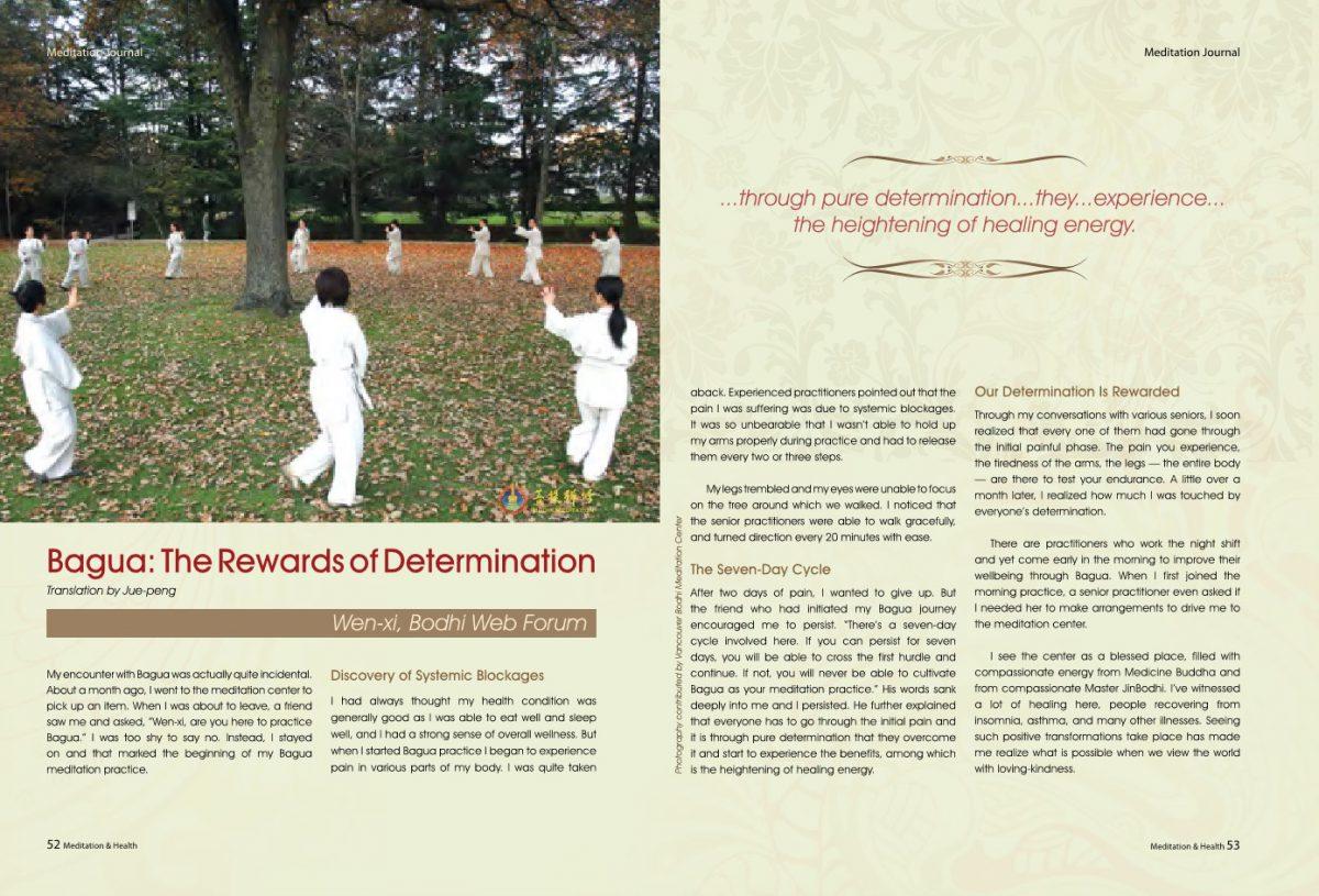 #8-Bagua:The Rewards of Determination