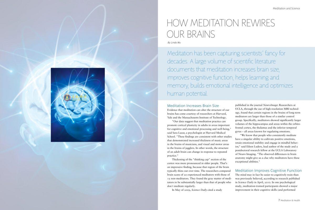 #4 – How Meditation Rewires Our Brains